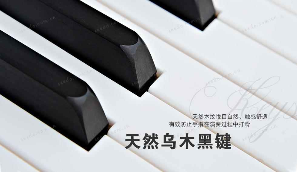 珠江JY120钢琴的天然乌木黑键