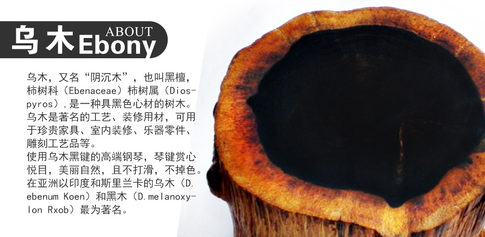珠江JY120钢琴键盘的乌木材质