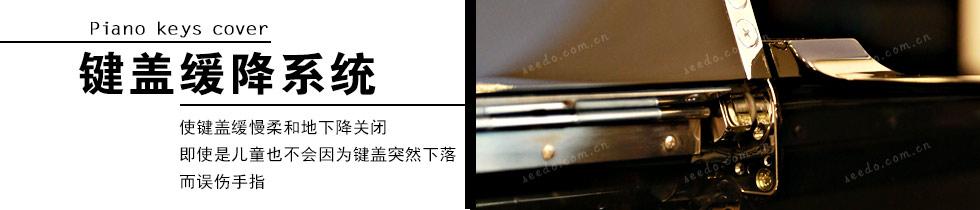 珠江-恺撒堡EK1的键盖缓降系统