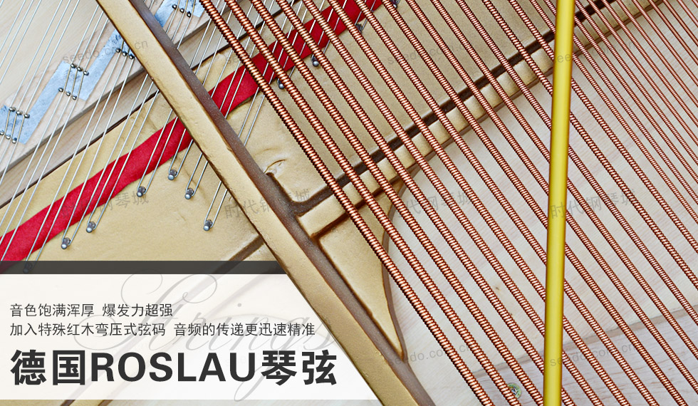 珠江-恺撒堡EK1的德国进口琴弦