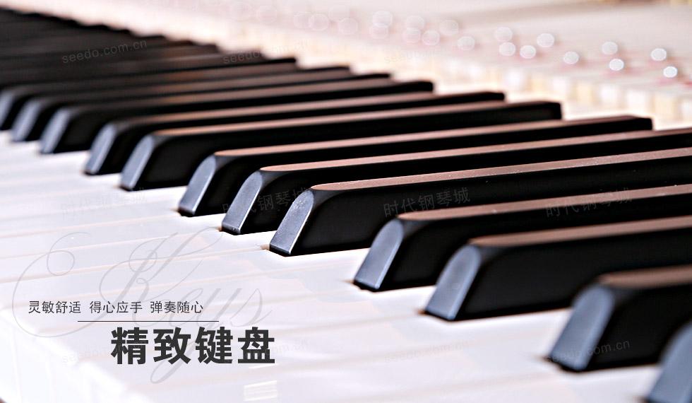 珠江-UP125P1的精致键盘