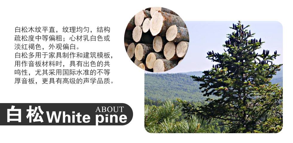 京珠-BUP126B的音板的白松材质