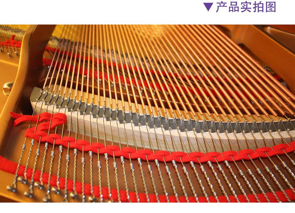 YAMAHA-GC2产品实拍图